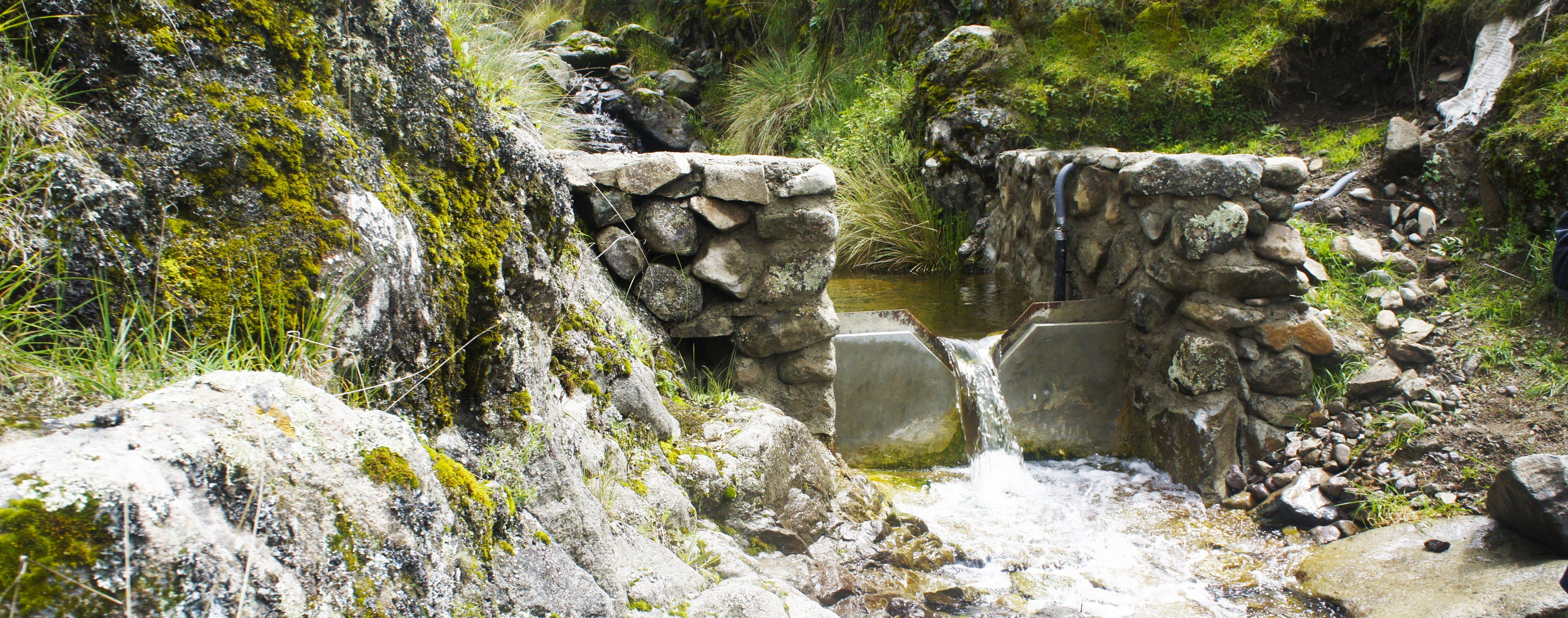 Recuperando manantiales en Huamantanga ante la escasez hídrica