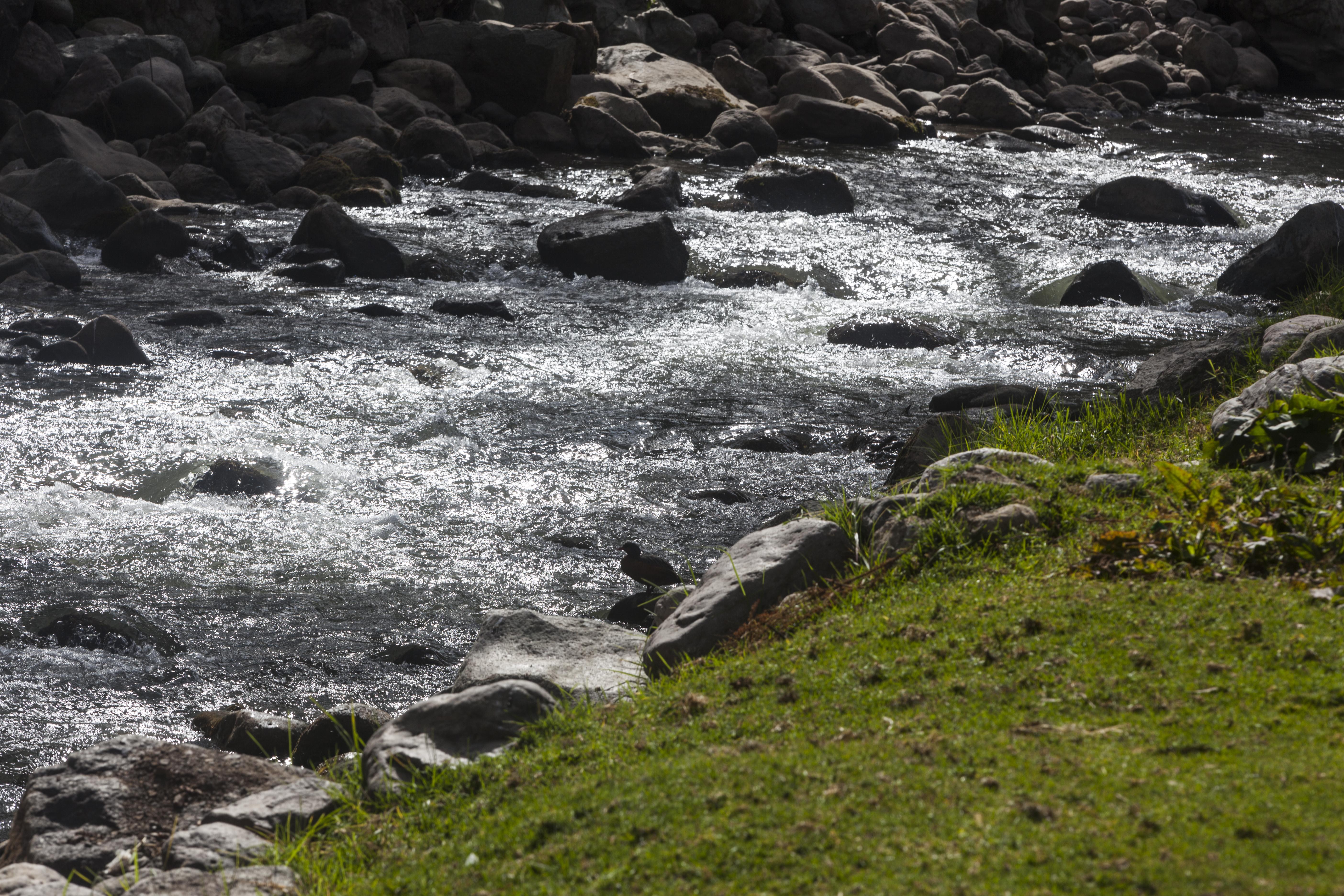 Los beneficios ambientales, económicos y sociales de la protección de las fuentes de agua