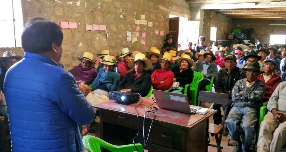 Fortalecimiento de Capacidades en Manejo Agronómico del Cultivo de Palto en la Comunidad de San Pedro de Casta