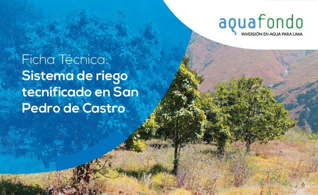 Ficha técnica: Sistema de riego tecnificado en San Pedro de Castro